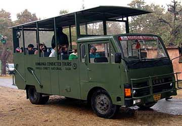 Canter Safari - Jim Corbett National Park