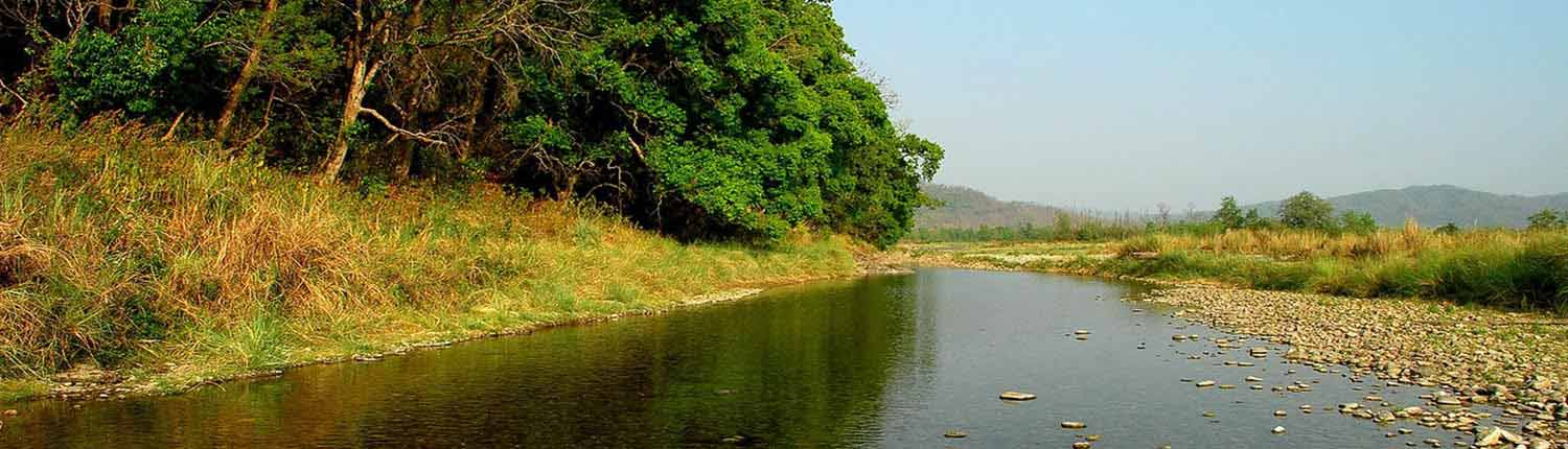 Sonanadi Wildlife Sanctuary Forest Lodge / Zone | Jim Corbett National Park Online Booking Website | India